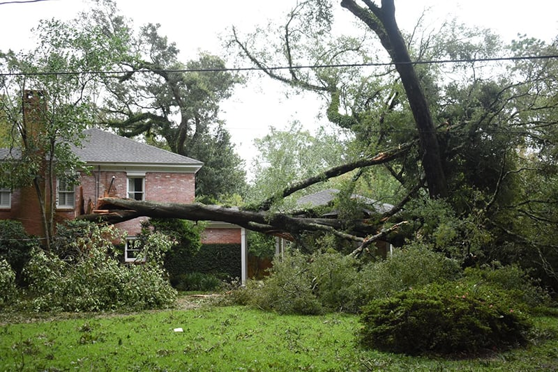 Gulf Coast dioceses assess damage from Hurricane Sally
